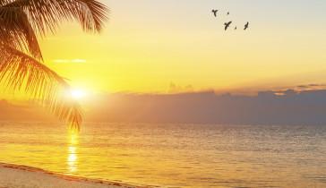 Margaritaville Hollywood Beach Resort - Sunset