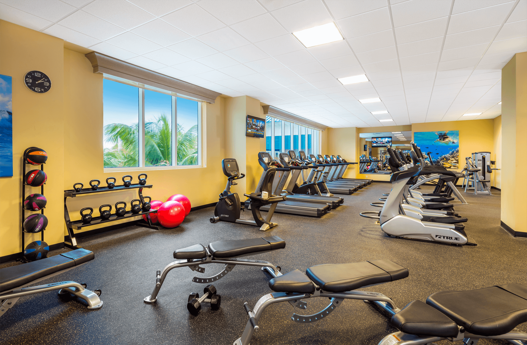 Fins Up Fitness Center