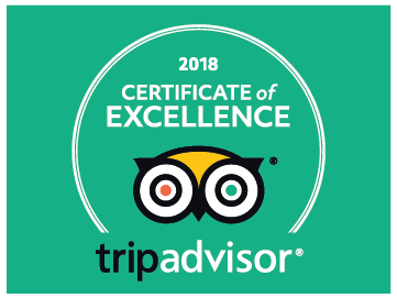 2018 Certificate of Excellence Tripadvisor green color graphic