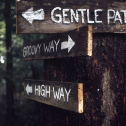 Which path would you choose?