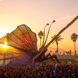 Coachella is Upon Us!