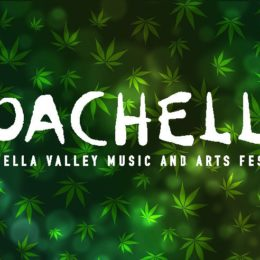 Weedmaps to Launch 'Marijuana Oasis' Adjacent to Coachella