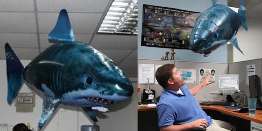 sharks_1