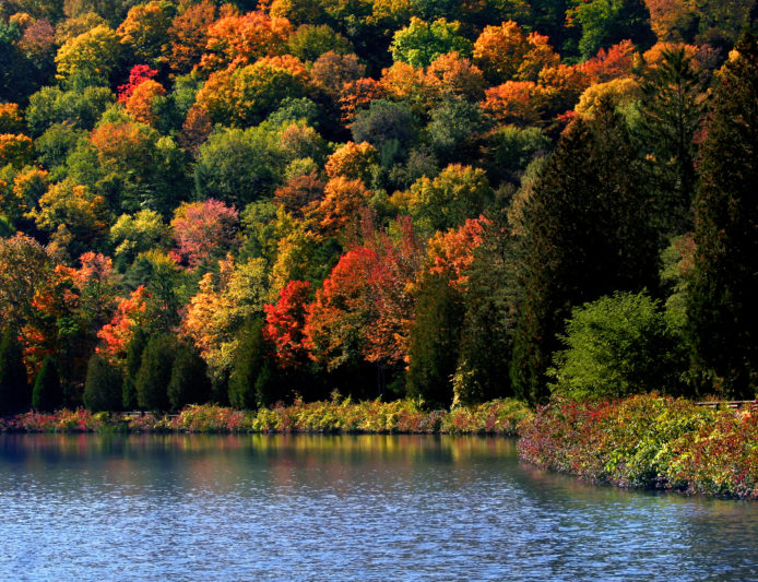 The best fall foliage destinations in america for Best fall destinations in the us