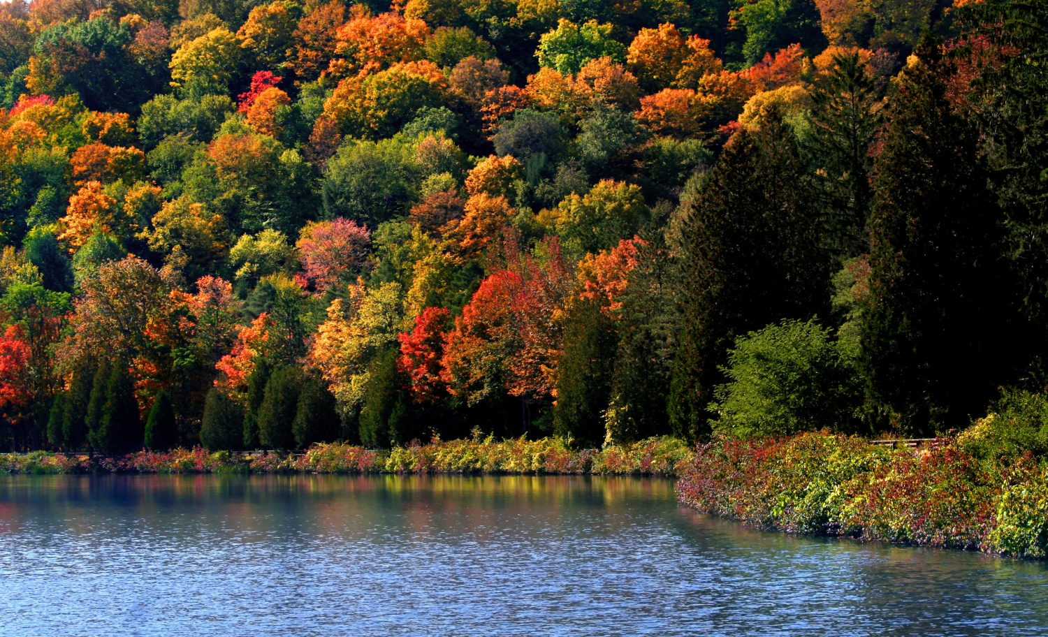 beyond be leaf the best fall foliage destinations in