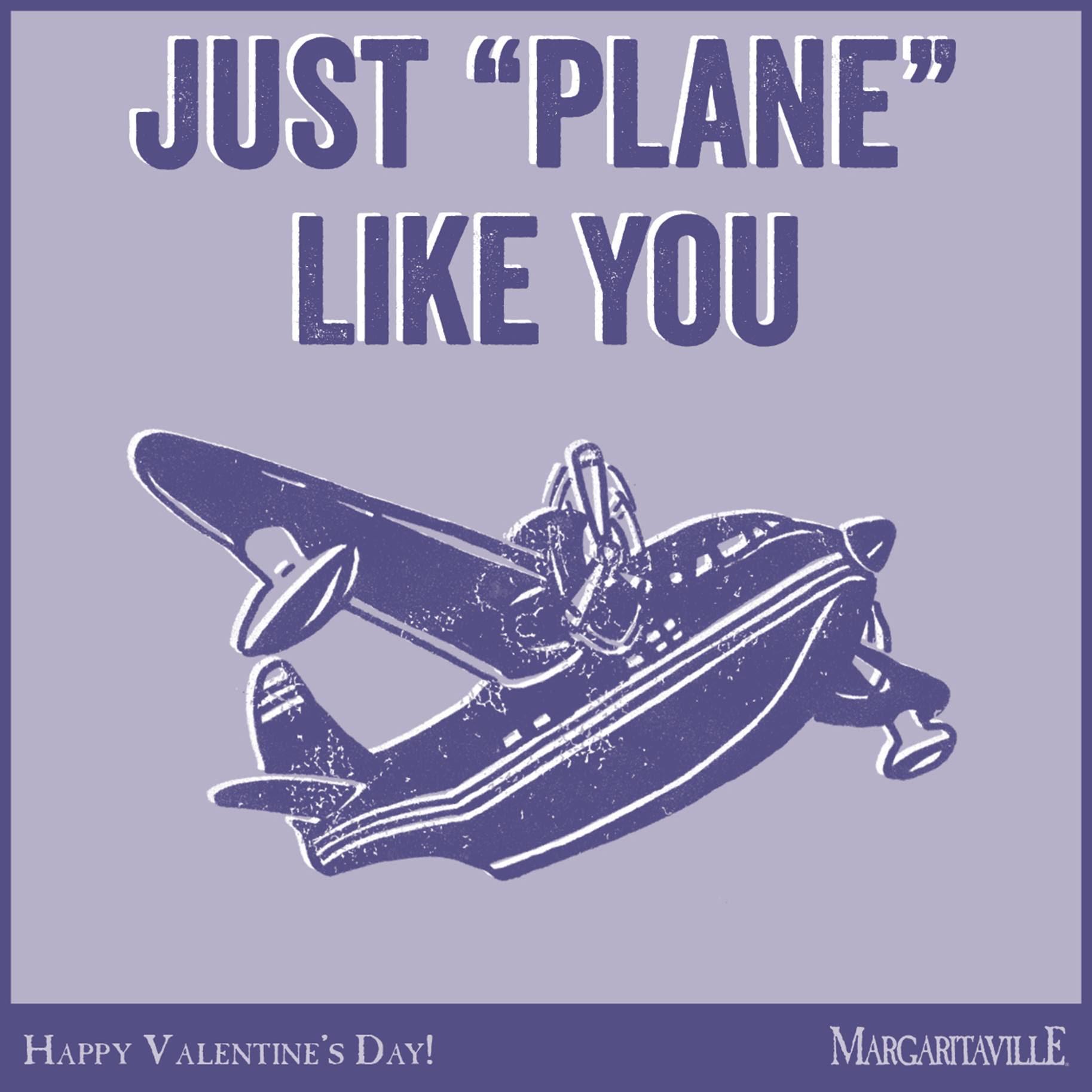 plane-like-you