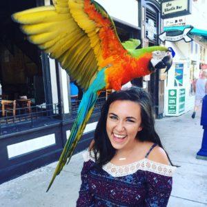 parrot-on-head