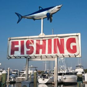 Sign Fishing