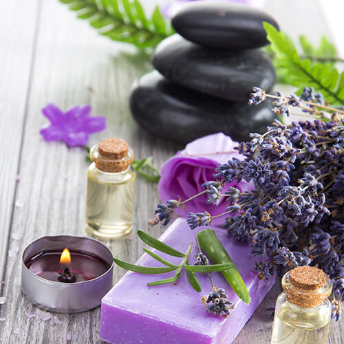 lavender in different forms like plant, candle, oil etc.