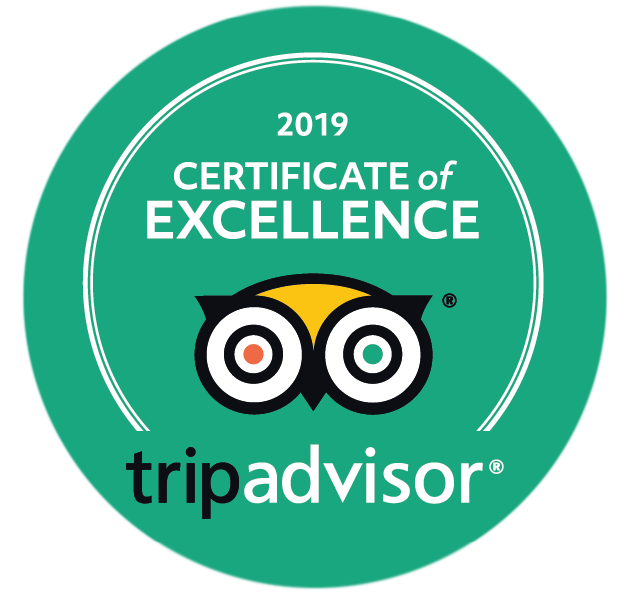 Certificate of Excellence Tripadvisor green color graphic